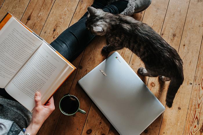 cat computer book